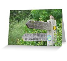 Which Way Shall I Fly ? Greeting Card