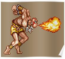 Dhalsim Poster