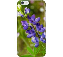 Lupine iPhone Case/Skin