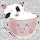 kittenccino in real life by Donguri