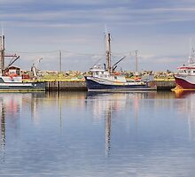 Three Boats at Trinity, NL, Canada by Gerda Grice