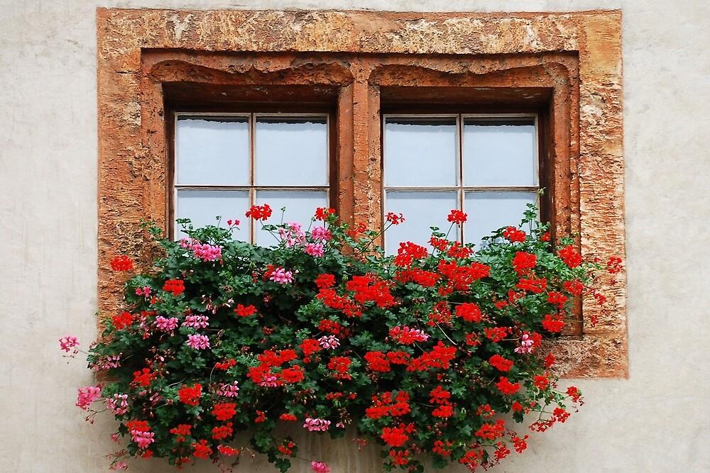 Window with flowers in Naters - Switzerland by Arie Koene
