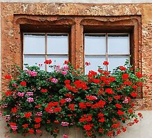 Window with flowers in Naters - Switzerland by Arie Koene