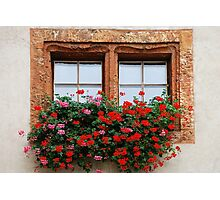 Window with flowers in Naters - Switzerland Photographic Print