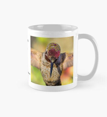 Hummingbird Mugshot Mug #1 Mug