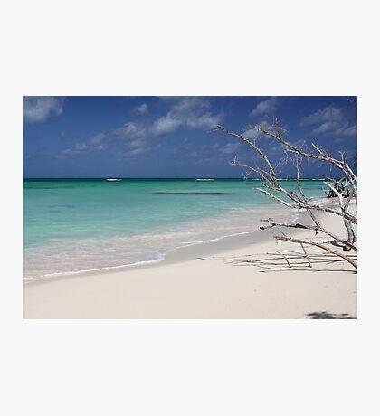 Beach Music Photographic Print