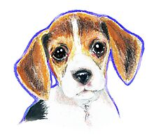 Cute Beagle Puppy Dog  Drawing Photographic Print