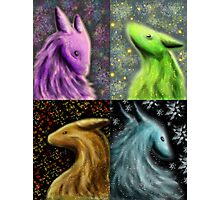 Four Seasons Dragons Photographic Print