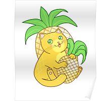Pineapple Cat Poster