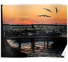 Sunset at Rio Lagartos Poster