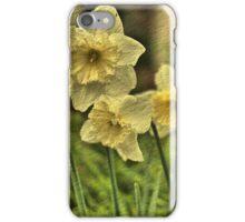 Nodding Golden Daffodils iPhone Case/Skin