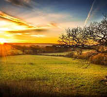 Sunset at Folly Farm, Somerset by brianhardy247