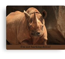 I'm not backing down! Canvas Print