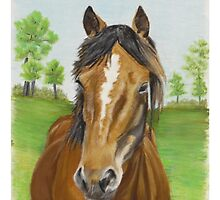 Brocks Pony by ArtbyJaneHazell