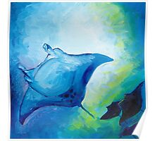 Sting Rays Poster