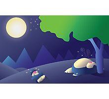 Pokemon Sleep Time - Munchlax and Snorlax Photographic Print