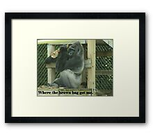 Where the brown bag got me. Framed Print