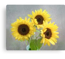 Three Bright Sunflowers Still Life Canvas Print