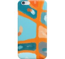 Aerial View Of Hometown iPhone Case/Skin