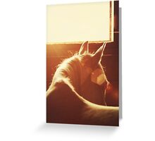 Flare Greeting Card