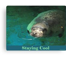 Staying Cool Canvas Print