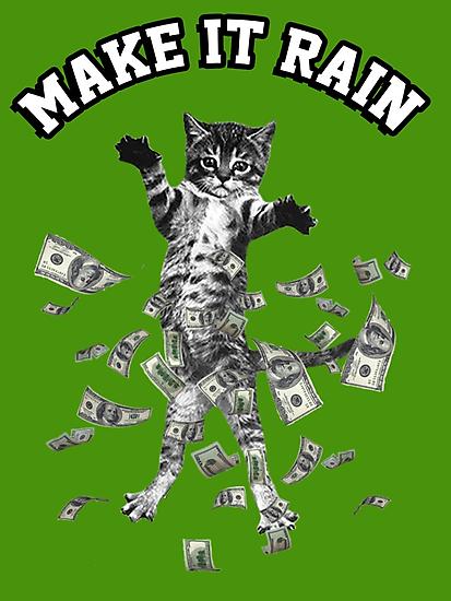 Cat Rain Meme