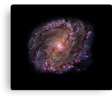 Stellar Genesis Canvas Print