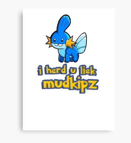 So I heard you like mudkips (I Herd U Liek Mudkipz) Canvas Print