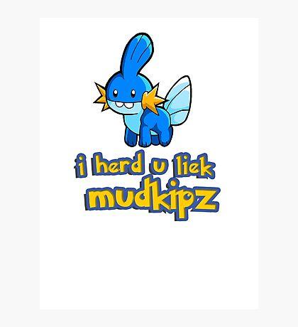 So I heard you like mudkips (I Herd U Liek Mudkipz) Photographic Print