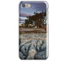 The Tree On The Pavement iPhone Case/Skin