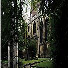Old Coventry by Peller