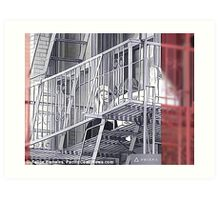 Fire Escape Chatting Art Print