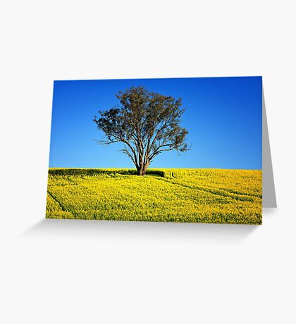 Tree in canola Greeting Card