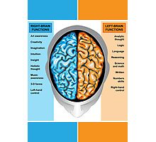 Human brain left and right functions Photographic Print