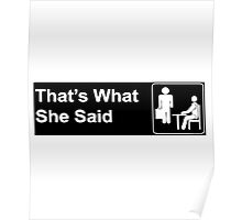funny t-shirt, That's what she said Poster
