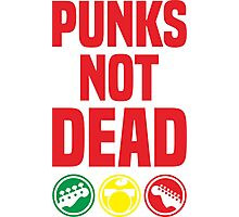 punks not dead Photographic Print
