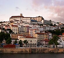 The Hill of Coimbra by Jane Ruttkayova