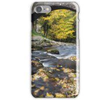 Autumn Bridge iPhone Case/Skin