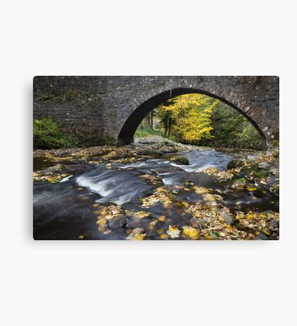 Autumn Bridge Canvas Print