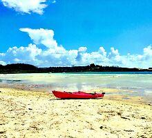 Fabulous summer memories by Janine Barr