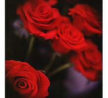 Analog photo of bunch bouquet of red roses Photographic Print