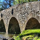 Historic Meadows Road Bridge by DJ Florek
