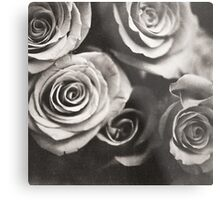 Medium format analog black and white photo of white rose flowers Metal Print