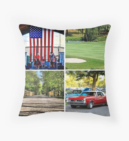 Saucon Valley Summer Throw Pillow