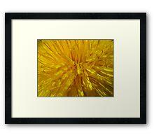 Unwanted Gold Framed Print