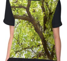 Web Of Branches Chiffon Top