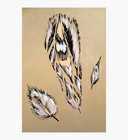Feather pattern 6 Photographic Print