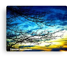 Terrified golden skies Canvas Print