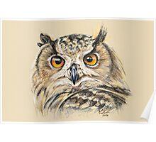 Owl Be Watching You Poster