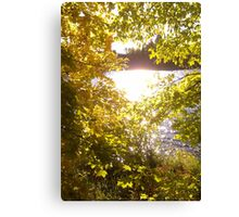 Tomorrows Yesterday Canvas Print